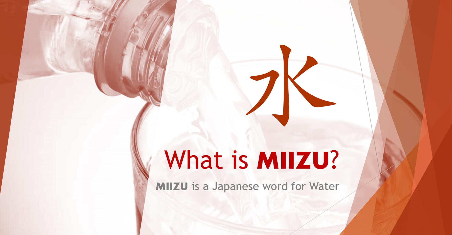 What is Miizu?