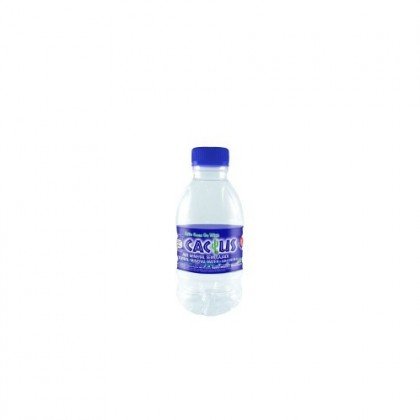 Cactus Natural Mineral Water Water 24x250ml